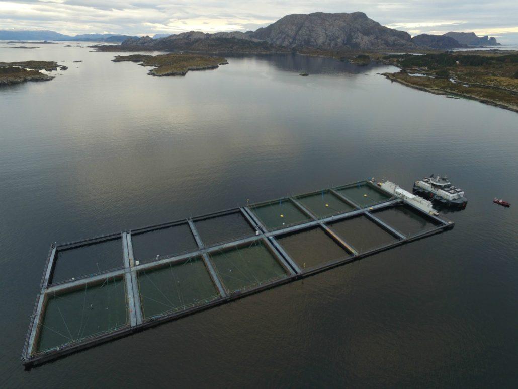 Lokalitet mot Kinn - E. Karstensen Fiskeoppdrett - www.karstensen.no